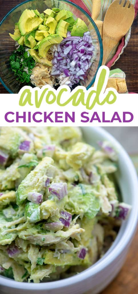 avocado chicken salad collage